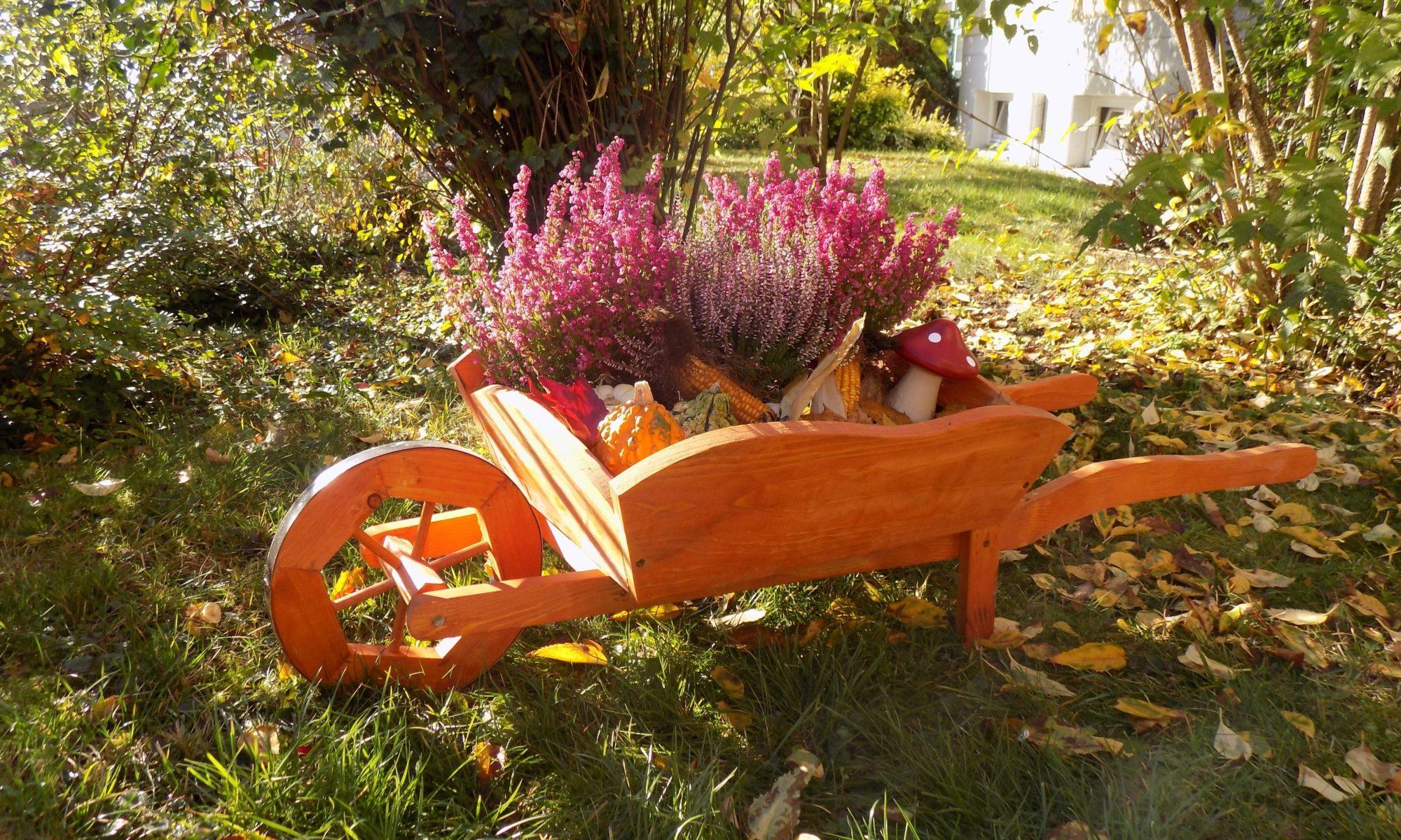 Pflanzschubkarre für die Gartengestaltung